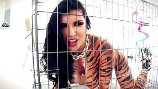 Romi Rain enjoys it in the ass today